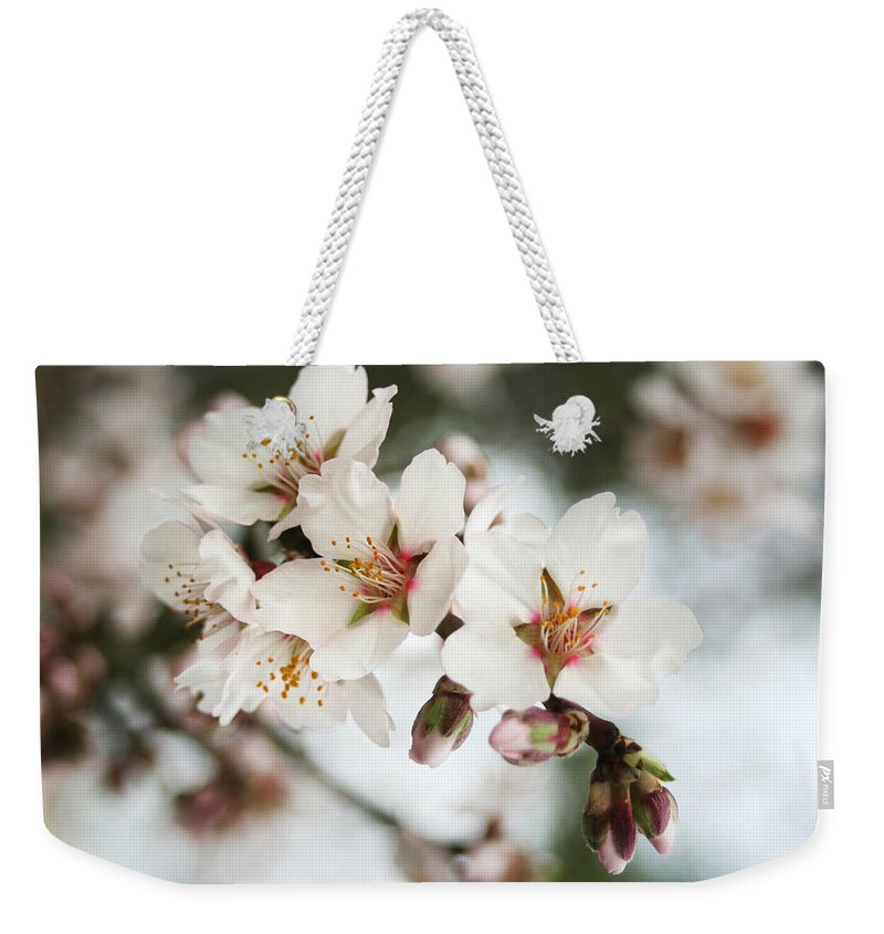 Spring Weekender Tote Bag featuring the photograph Spring by Masha Batkova