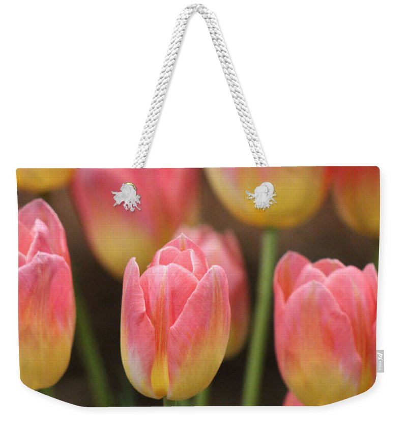 Spring Tulips Weekender Tote Bag featuring the photograph Spring Tulips by Linda Sannuti
