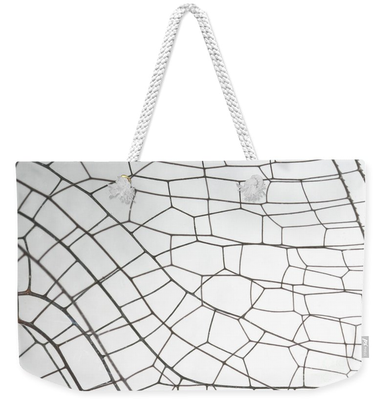 Animal Weekender Tote Bag featuring the photograph Springtime Darner Dragonfly Wing by Ted Kinsman