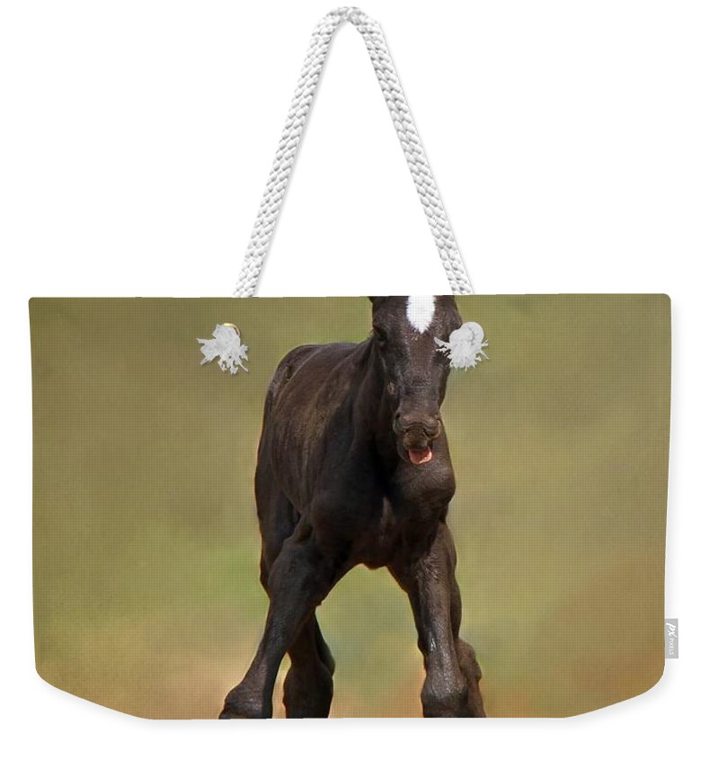 Animal Weekender Tote Bag featuring the photograph Standing On All Fours by Davandra Cribbie