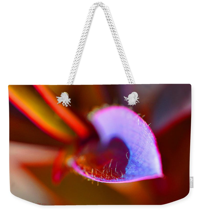 Plant Weekender Tote Bag featuring the photograph Stepping Out by Christine Stonebridge