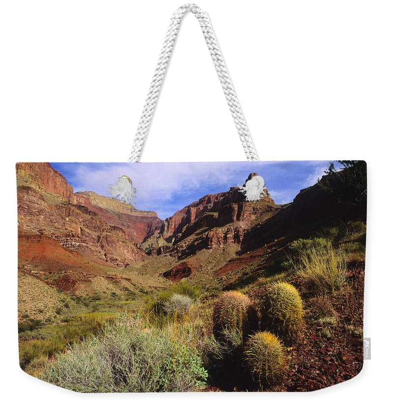 Stonecreek Canyon Weekender Tote Bag featuring the photograph Stonecreek Canyon In The Grand Canyon by David Edwards