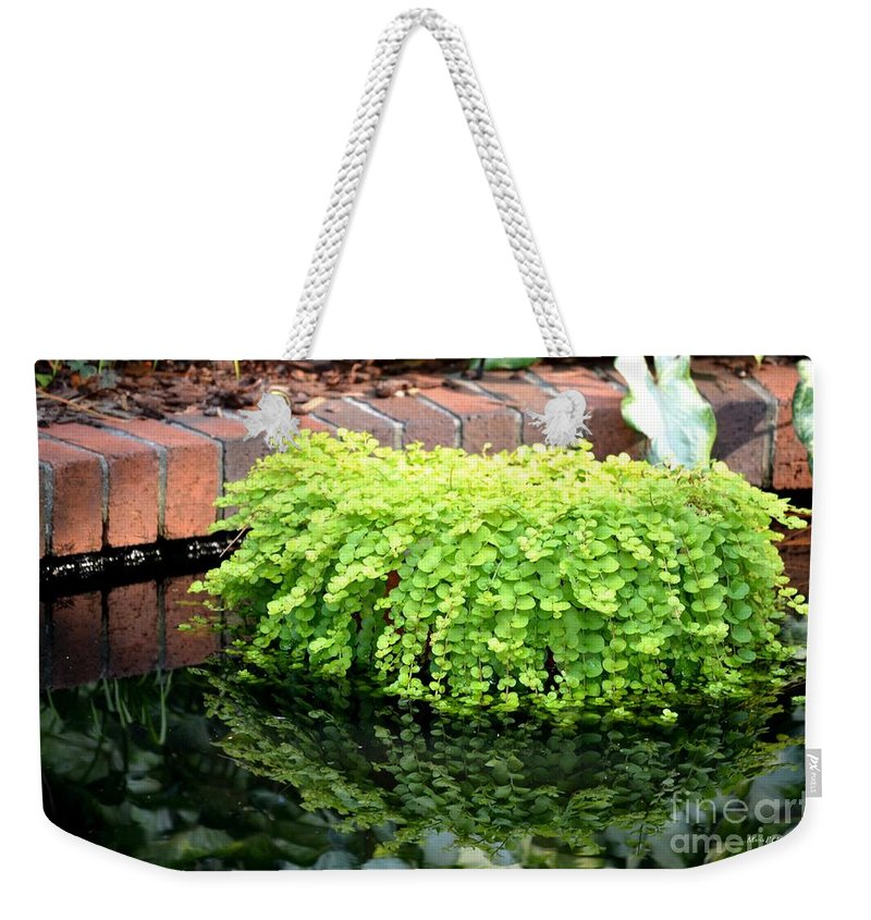 Stone Weekender Tote Bag featuring the photograph Stoneside Reflections by Maria Urso