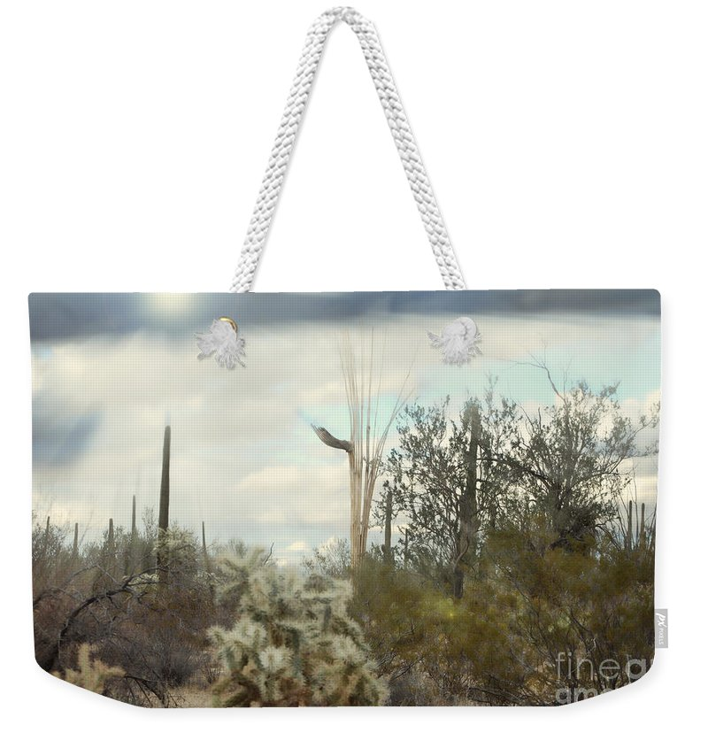 Fine Art Weekender Tote Bag featuring the photograph Stormy Sunshine by Donna Greene