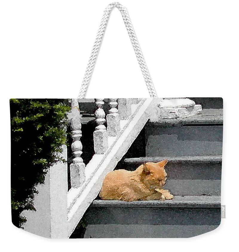Stratford Ct Weekender Tote Bag featuring the photograph Stratford Cat Nap by Melissa A Benson
