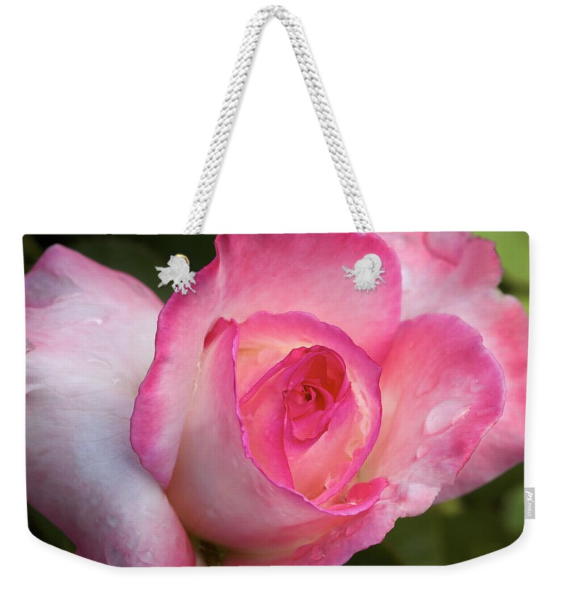 Rose Weekender Tote Bag featuring the photograph Strawberry Vanilla by Phyllis Denton