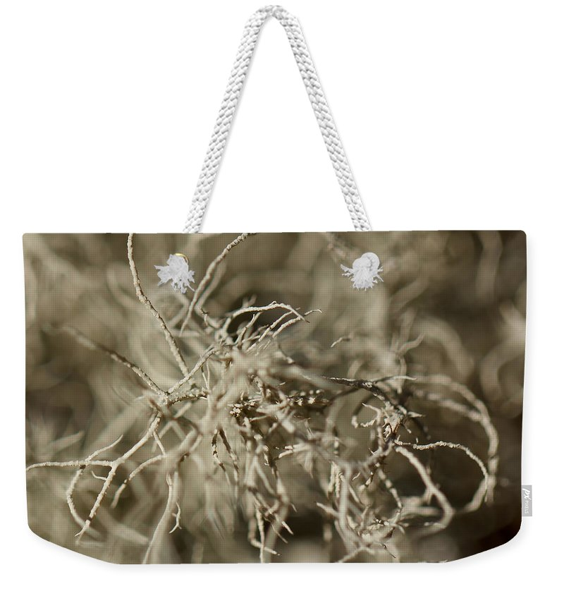 Stringy Weekender Tote Bag featuring the photograph Stringy Lichen by Jakub Sisak