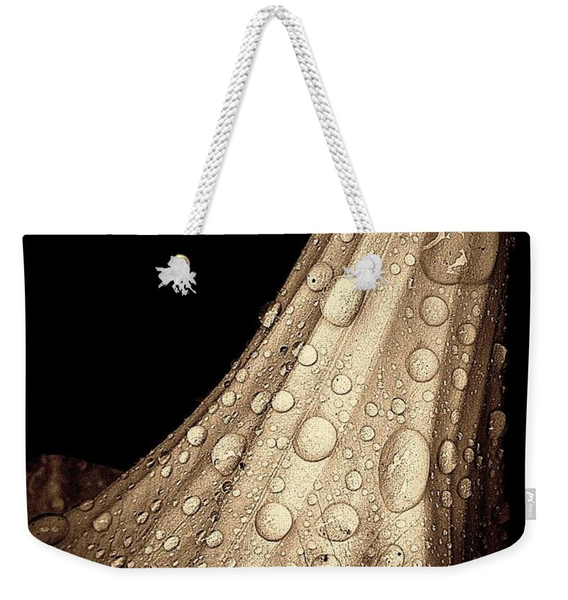 Earthy Weekender Tote Bag featuring the photograph Study In Brown by Chris Berry