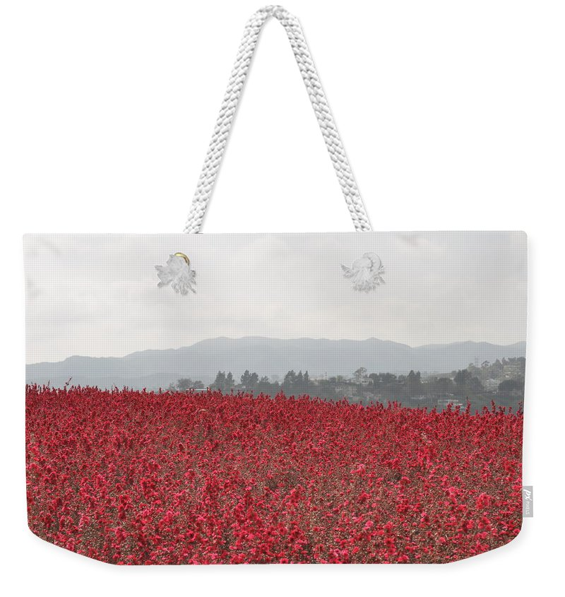 California Weekender Tote Bag featuring the photograph Study In Red And Grey by Rich Bodane