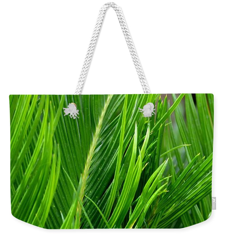 Succeeding Weekender Tote Bag featuring the photograph Succeeding Waves by Maria Urso