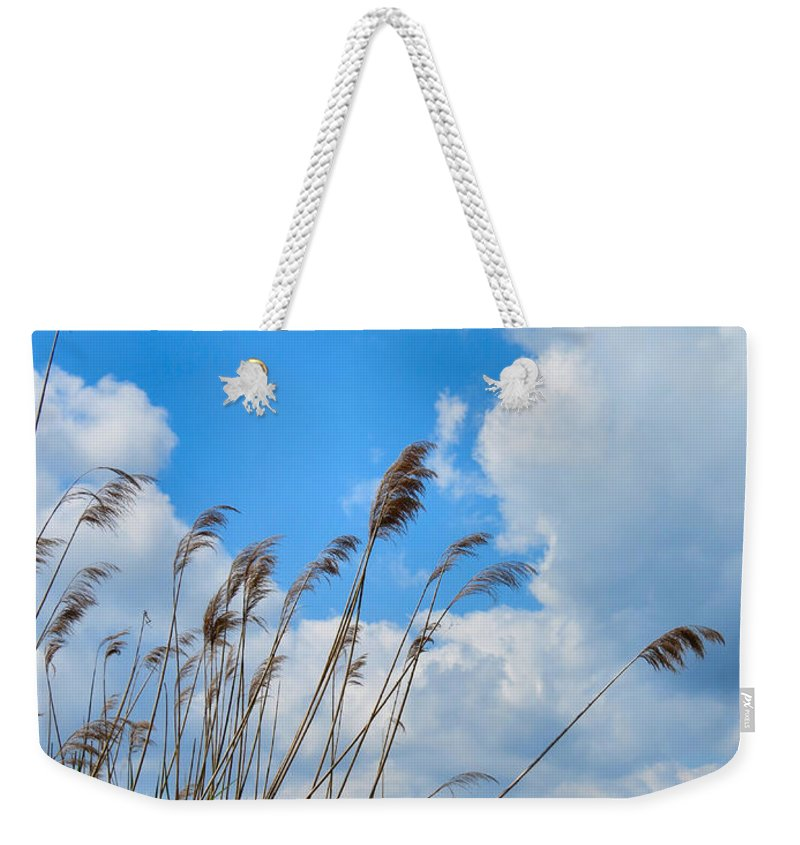 Warm Weekender Tote Bag featuring the photograph Summer Days by Art Dingo