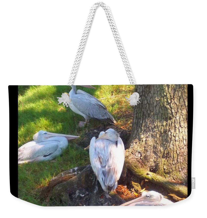 Jacksonville Weekender Tote Bag featuring the photograph Summer Relaxin by Rebecca Stephens
