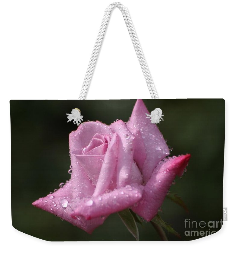 Rose Weekender Tote Bag featuring the photograph Summer Shower by Living Color Photography Lorraine Lynch