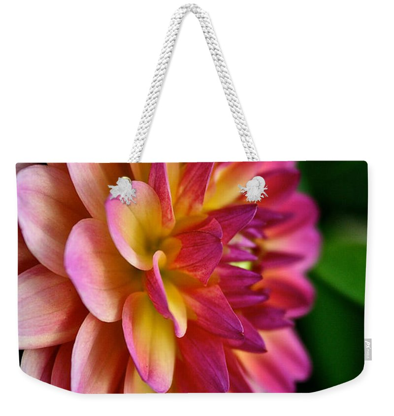 Plant Weekender Tote Bag featuring the photograph Sundown Dahlia by Susan Herber