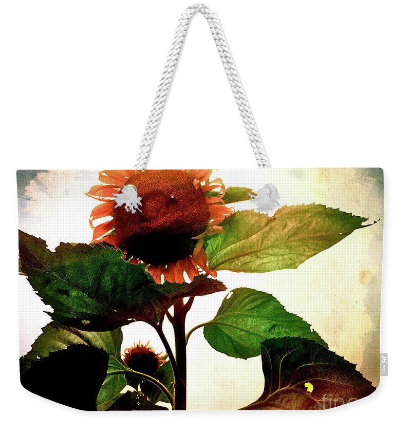 Sunflower Weekender Tote Bag featuring the photograph The Business Of Bees by Kevyn Bashore