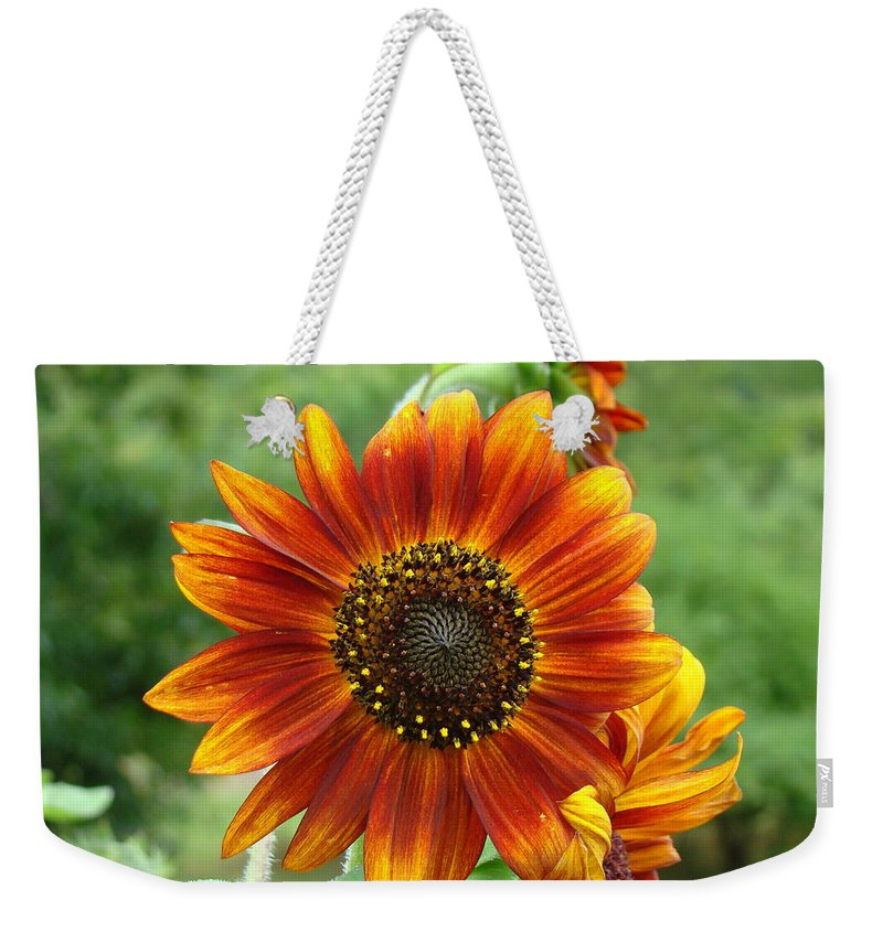 Red Sunflower Weekender Tote Bag featuring the photograph Sunflower by Lisa Rose Musselwhite