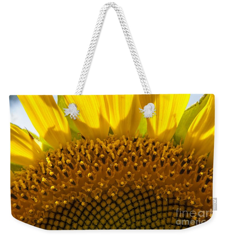 Sunflower Weekender Tote Bag featuring the photograph Sunflower Macro by Darleen Stry