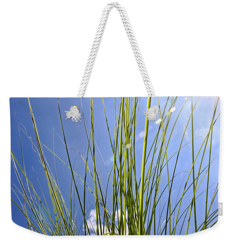 Sun Weekender Tote Bag featuring the photograph Sunny Days by Brittany Horton