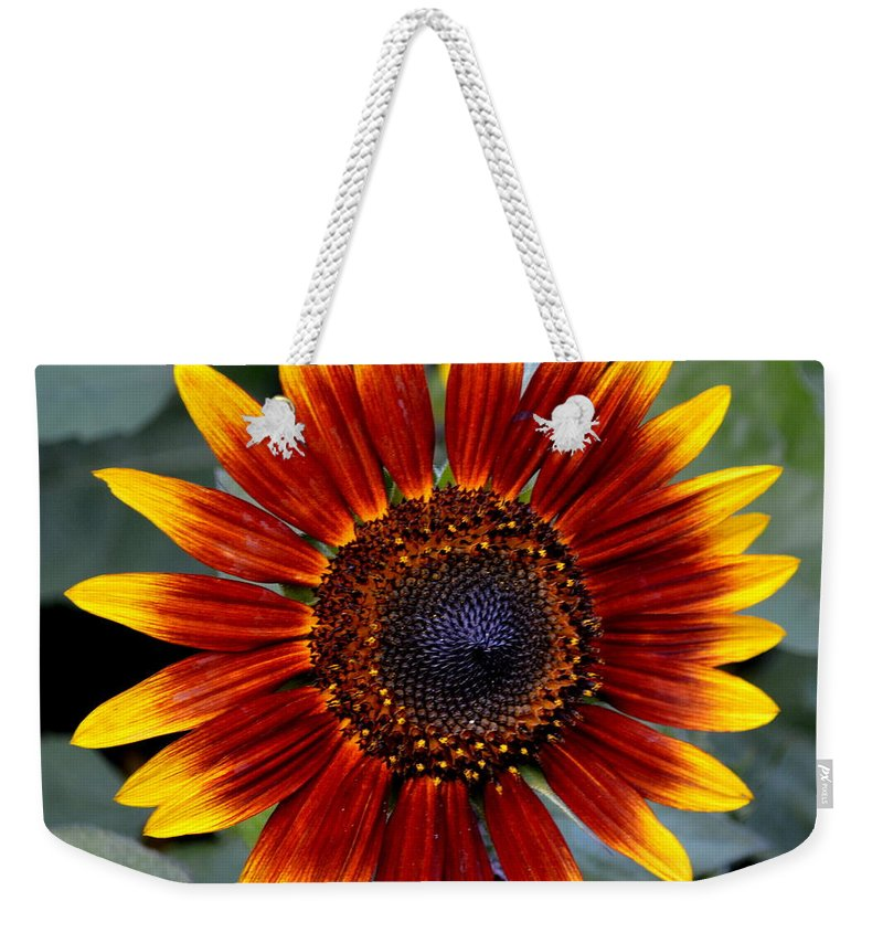 Red Weekender Tote Bag featuring the photograph Sunny Flower by Kevin Fortier