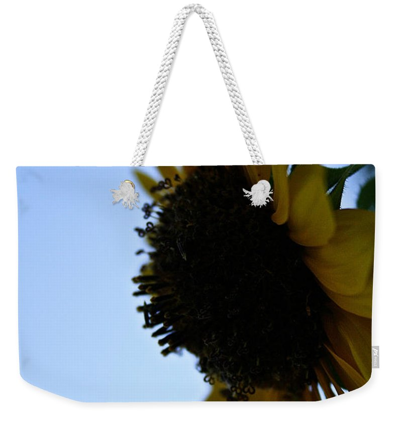 Outdoors Weekender Tote Bag featuring the photograph Sunny Sundown by Susan Herber