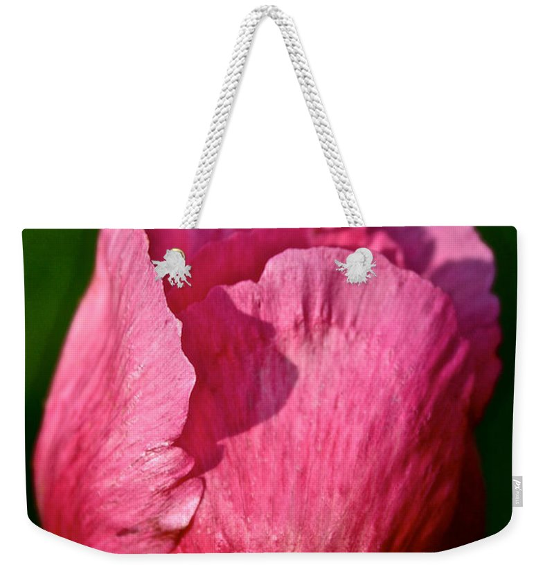 Plant Weekender Tote Bag featuring the photograph Sunrise Pink by Susan Herber