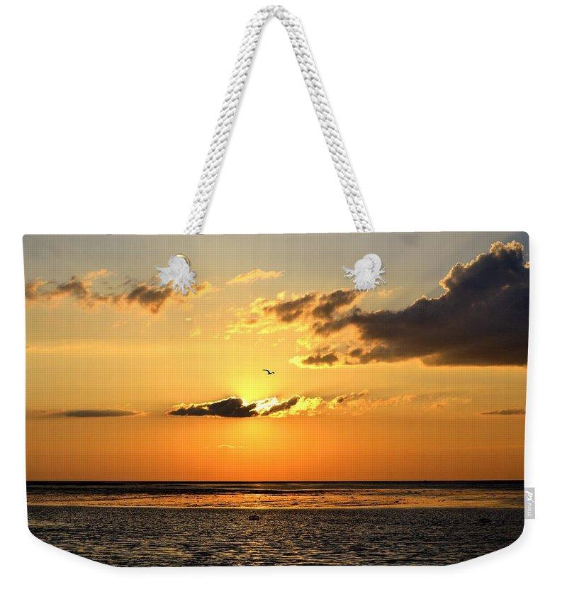 Florida Weekender Tote Bag featuring the photograph Sunset Flight by Kari Tedrick