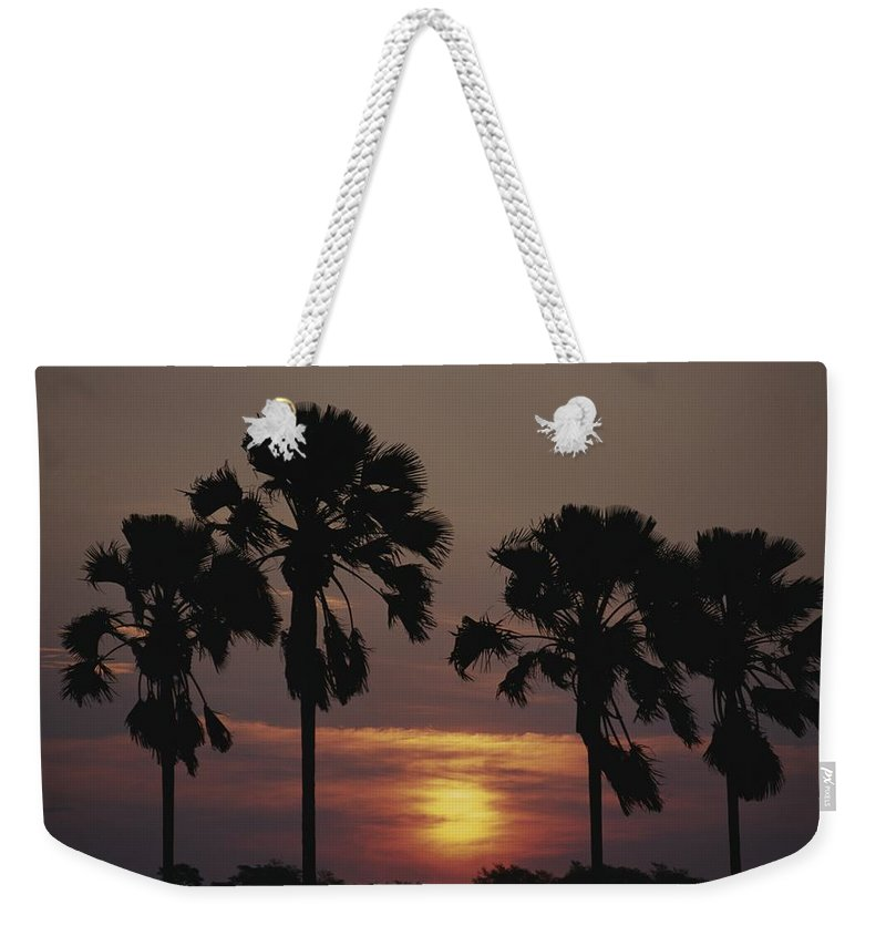 Plants Weekender Tote Bag featuring the photograph Sunset On Shire River by Anne Keiser