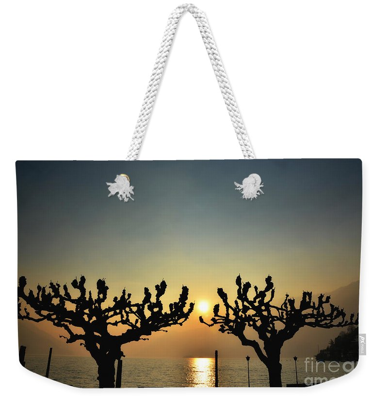 Tree Weekender Tote Bag featuring the photograph Sunshine Over A Lake by Mats Silvan