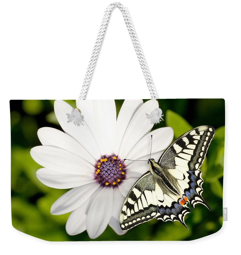 Nature Weekender Tote Bag featuring the photograph Swallowtail Butterfly by Mark Heywood