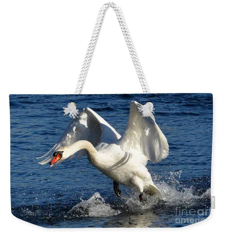 Swan Weekender Tote Bag featuring the photograph Swan In Action by Mats Silvan