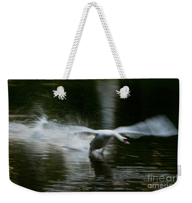 Bavaria Weekender Tote Bag featuring the photograph Swan In Motion by Andrew Michael