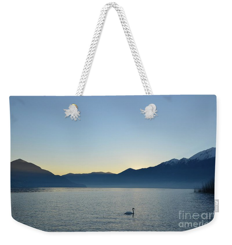 Swan Weekender Tote Bag featuring the photograph Swan Swimming by Mats Silvan