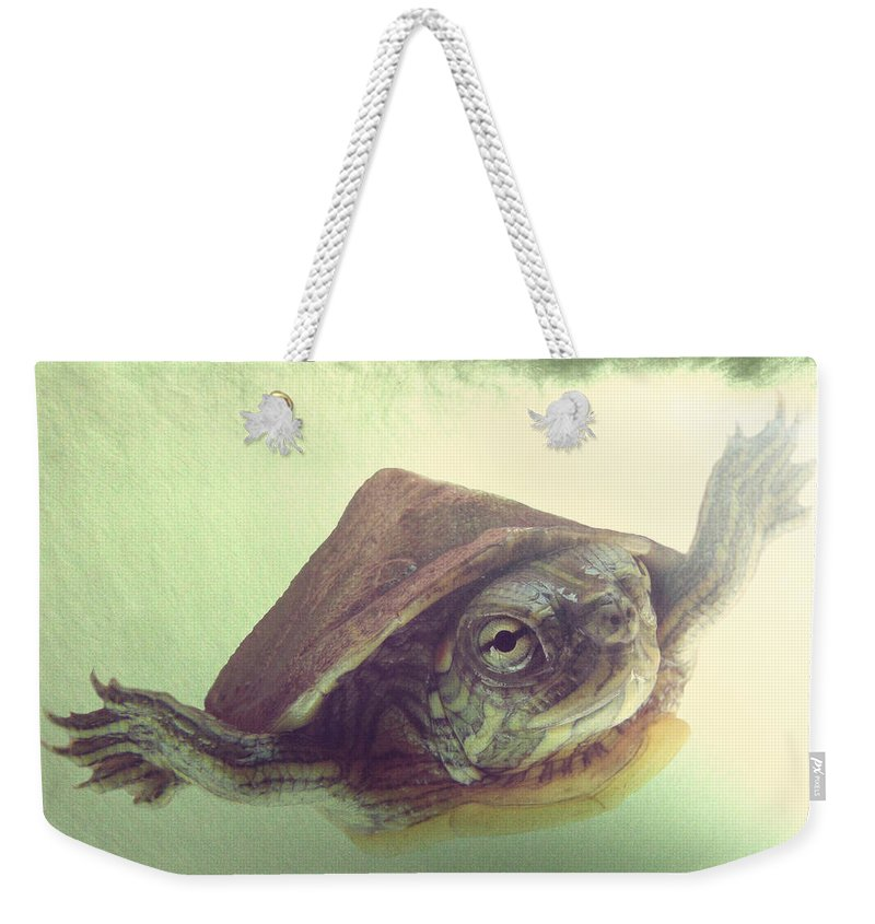 Painted Turtle Weekender Tote Bags