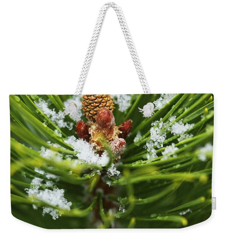Ice Weekender Tote Bag featuring the photograph Swirls Of Green by Marilyn Hunt