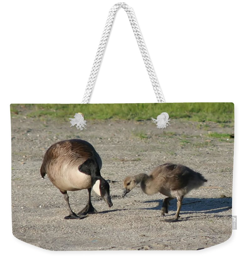 Canada Goose Weekender Tote Bag featuring the photograph Teaching by Smilin Eyes Treasures