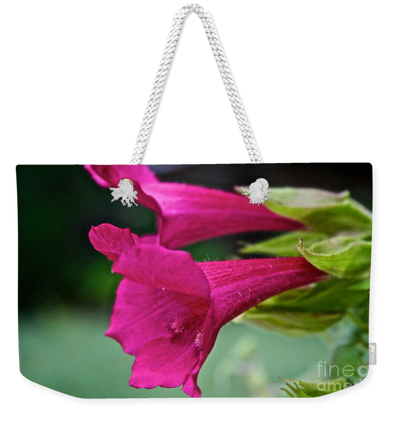 Outdoors Weekender Tote Bag featuring the photograph Team Trumpet by Susan Herber