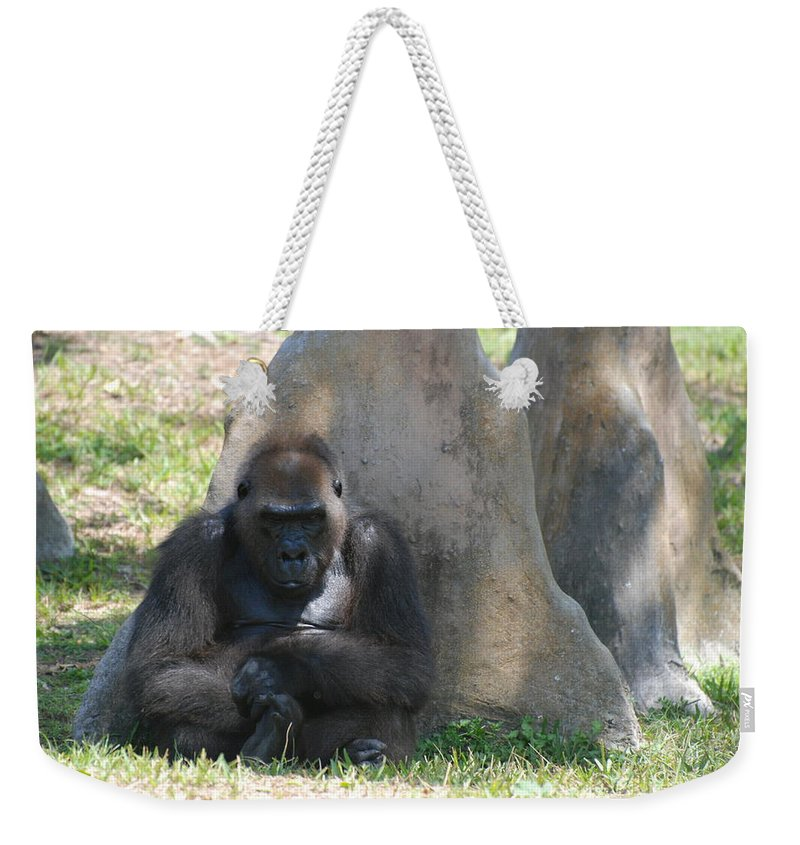 Animal Weekender Tote Bag featuring the photograph The Angry Ape by Rob Hans