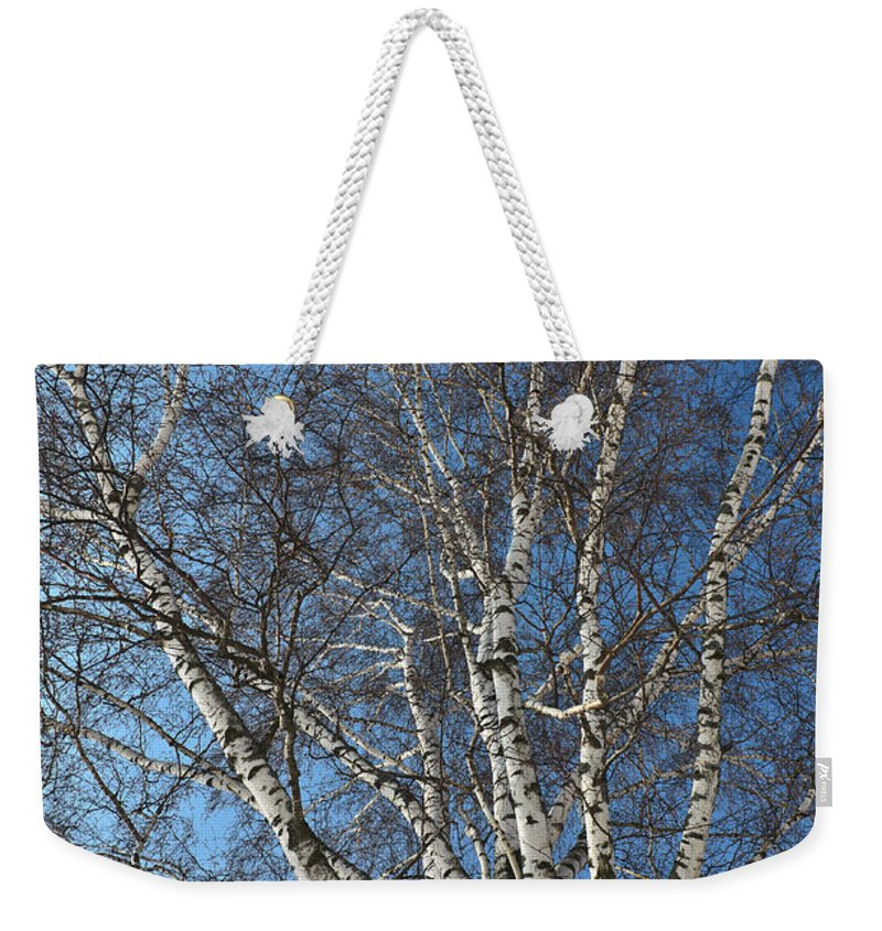 Abstract Weekender Tote Bag featuring the photograph The Birch by Michael Goyberg