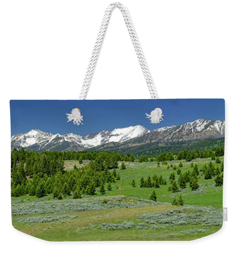 Americas Weekender Tote Bag featuring the photograph The Crazies by Roderick Bley