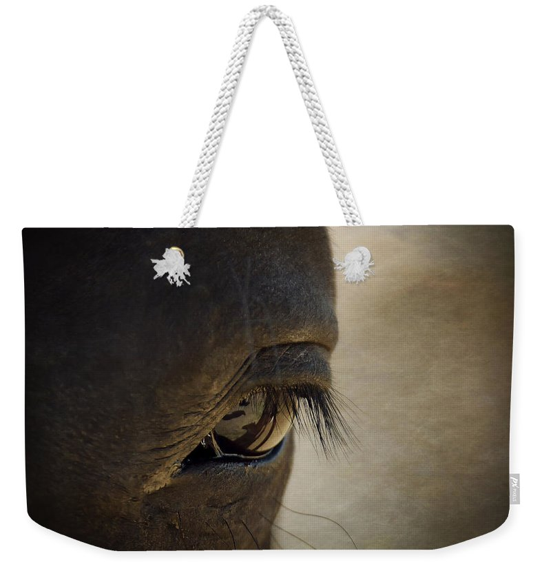 Horse Weekender Tote Bag featuring the photograph The Eyes Are The Window To The Soul by Saija Lehtonen