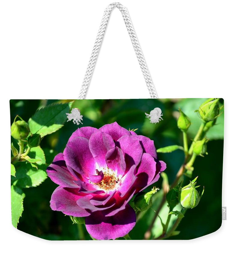 Fallen Weekender Tote Bag featuring the photograph The Fallen Petal by Maria Urso
