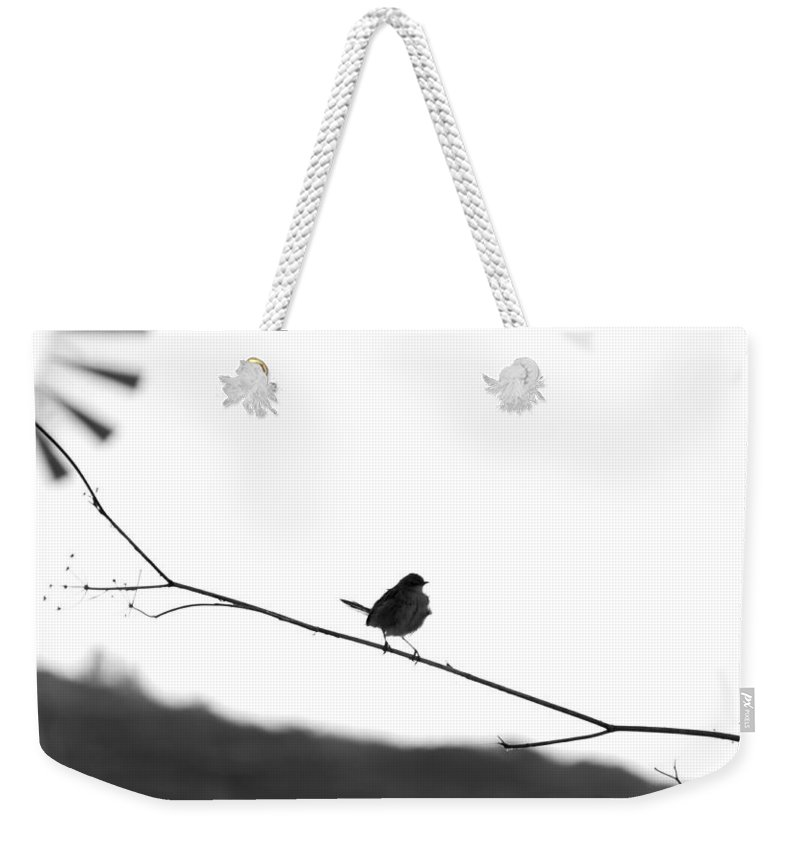 Bird Weekender Tote Bag featuring the photograph The Fly Catcher by Focus Fotos