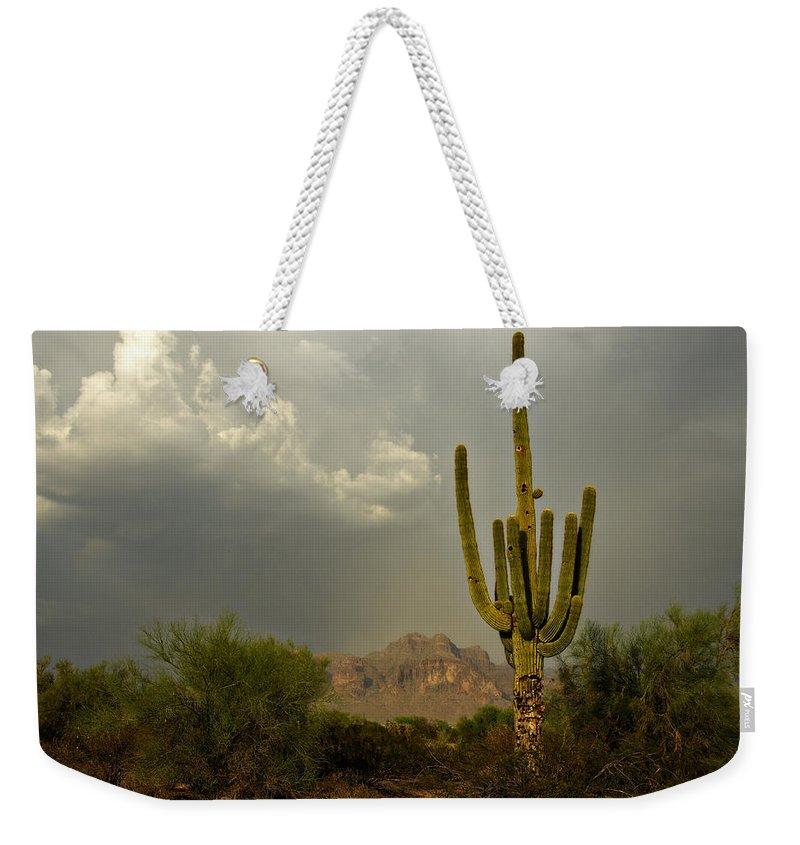 Sunset Weekender Tote Bag featuring the photograph The Golden Saguaro by Saija Lehtonen