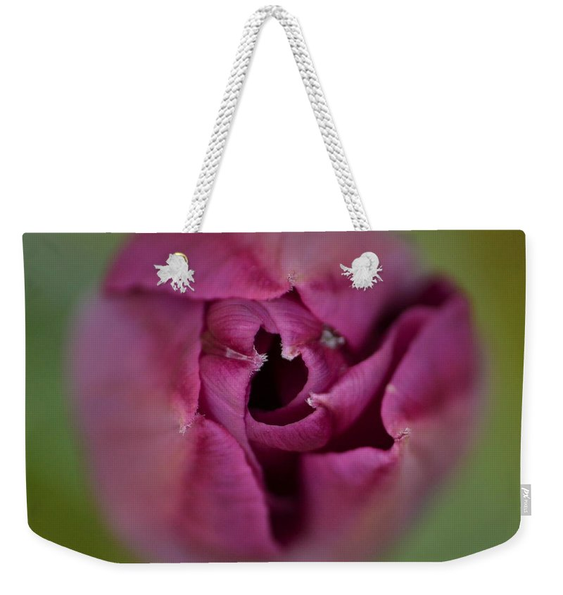 J.d. Grimes Weekender Tote Bag featuring the photograph The Grand Opening by JD Grimes
