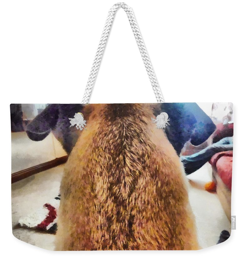 Dog Weekender Tote Bag featuring the photograph The Guardian by Steve Taylor