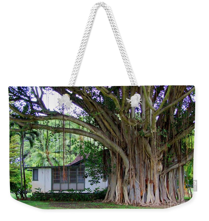 House Weekender Tote Bag featuring the photograph The House Beside The Banyan Tree by Mary Deal