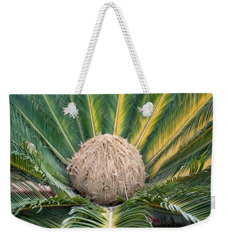 Green Weekender Tote Bag featuring the photograph The Inside Of A Fern With The Large Flower In The Middle by Ashish Agarwal