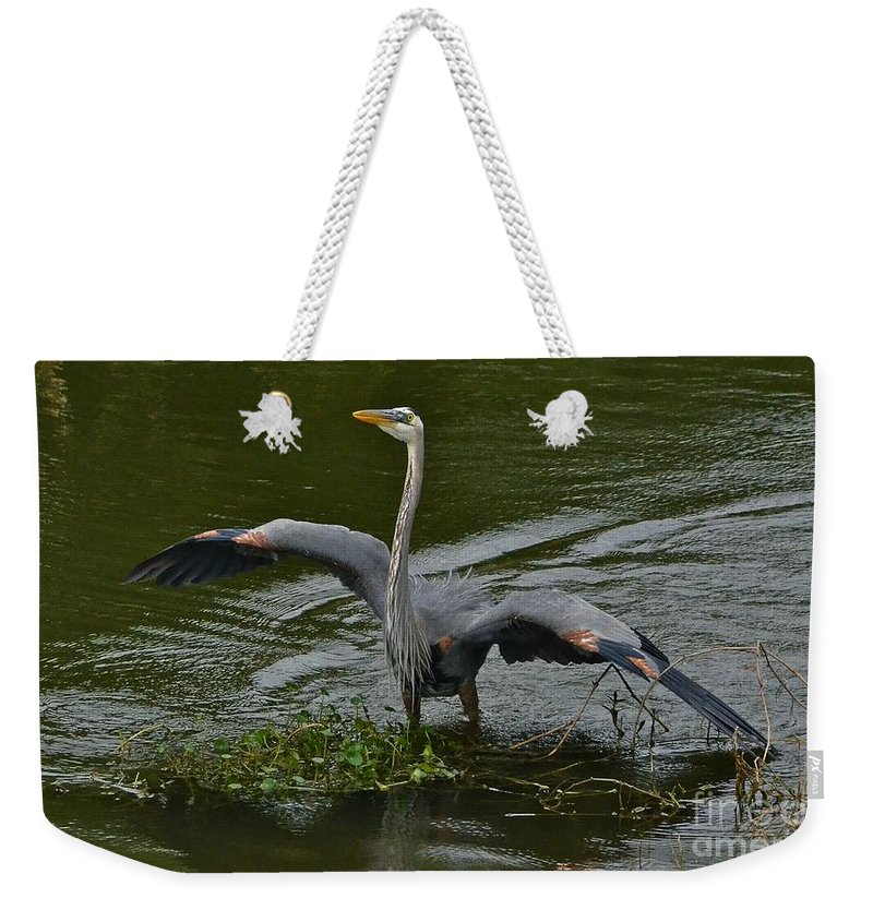 Heron Weekender Tote Bag featuring the photograph The Mating Dance by Carol Bradley