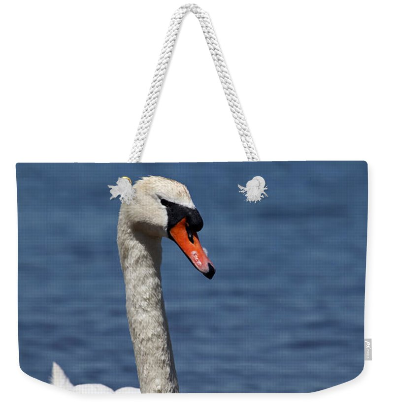 Swan Weekender Tote Bag featuring the photograph The Mute Swan by Karol Livote