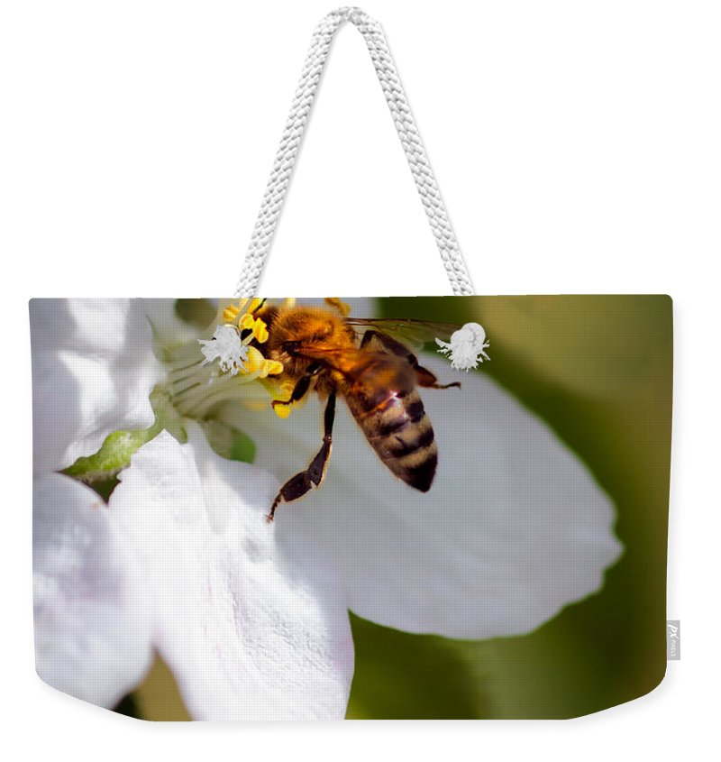 Animals Weekender Tote Bag featuring the photograph The Pollinator by Robert Bales